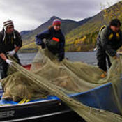 Triton staff on a body of water with nets